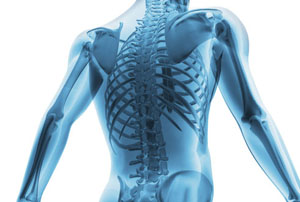 кальций нужен нам, прежде всего, для нормальной структуры костей