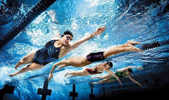 спортсмены плавают в бассейне