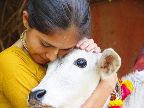 больше всего вегетарианцев - в Индии