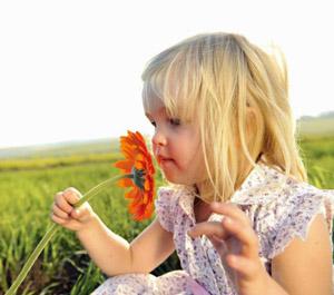 влияние эфирных масел на человека аналогично вдыханию аромата цветов